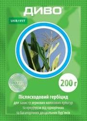 Гербіцид Диво / Банвел 75%